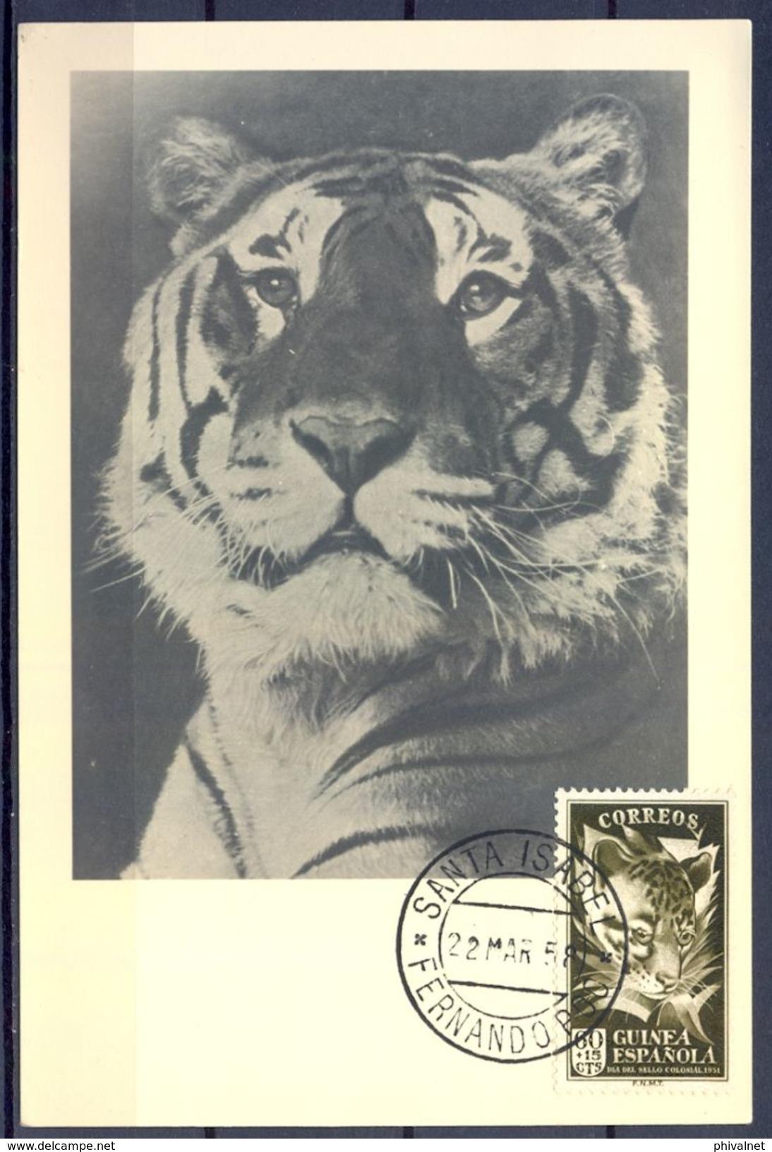 1958 , GUINEA ESPAÑOLA , ED. 308 - DIA DEL SELLO , FAUNA , FELINOS , GENETTA FELINA , MAT. SANTA ISABEL / FERNANDO POO - Guinea Española
