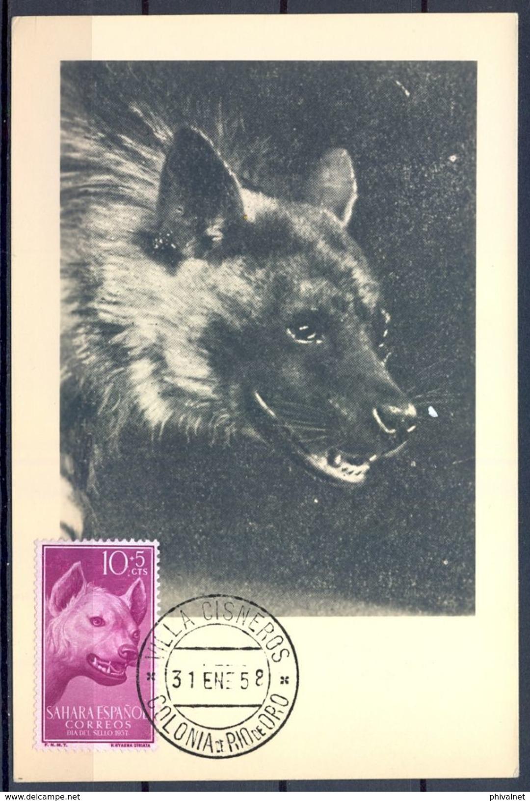 1958 , SAHARA ESPAÑOL , ED. 142 - DIA DEL SELLO , HIENA MANCHADA  , MAT. VILLA CISNEROS / COLONIA DE RIO DE ORO - Sahara Español