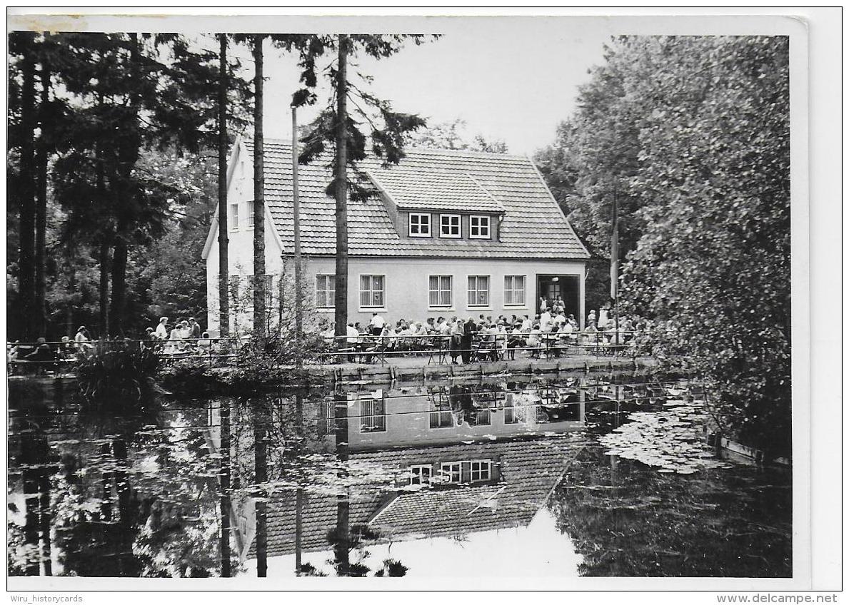 AK 0818  Schmiedefeld ( Gaststätte , Terrasse ) - Ostalgie , DDR Um 1960 - Schmiedefeld