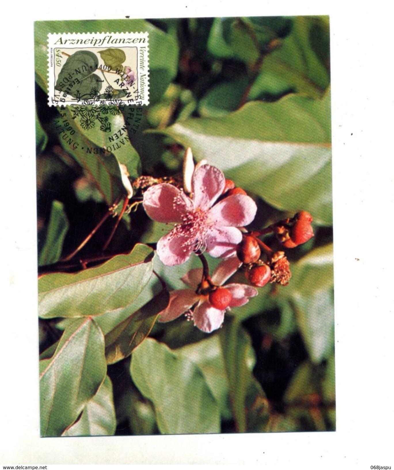 Carte Maximum 1990 Plante Medicinal Eglantine ! - New York - Sede Centrale Delle NU