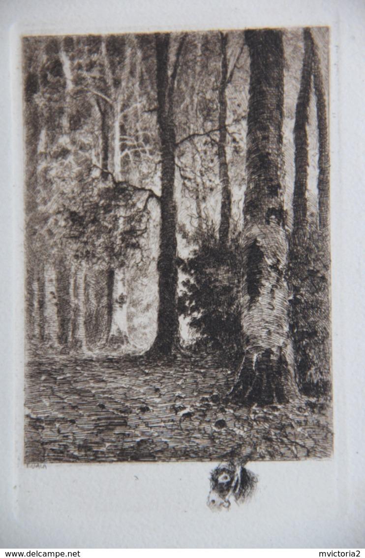 RARE - Gravure Sur CPA De L'Artiste Eugène VIALA (1859 - 1913) - Illustrators & Photographers