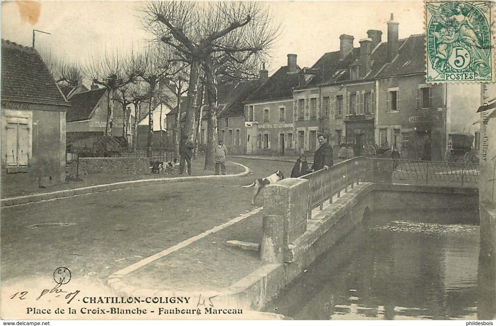 LOIRET  CHATILLON COLIGNY  Place De La Croix Blanche - Chatillon Coligny