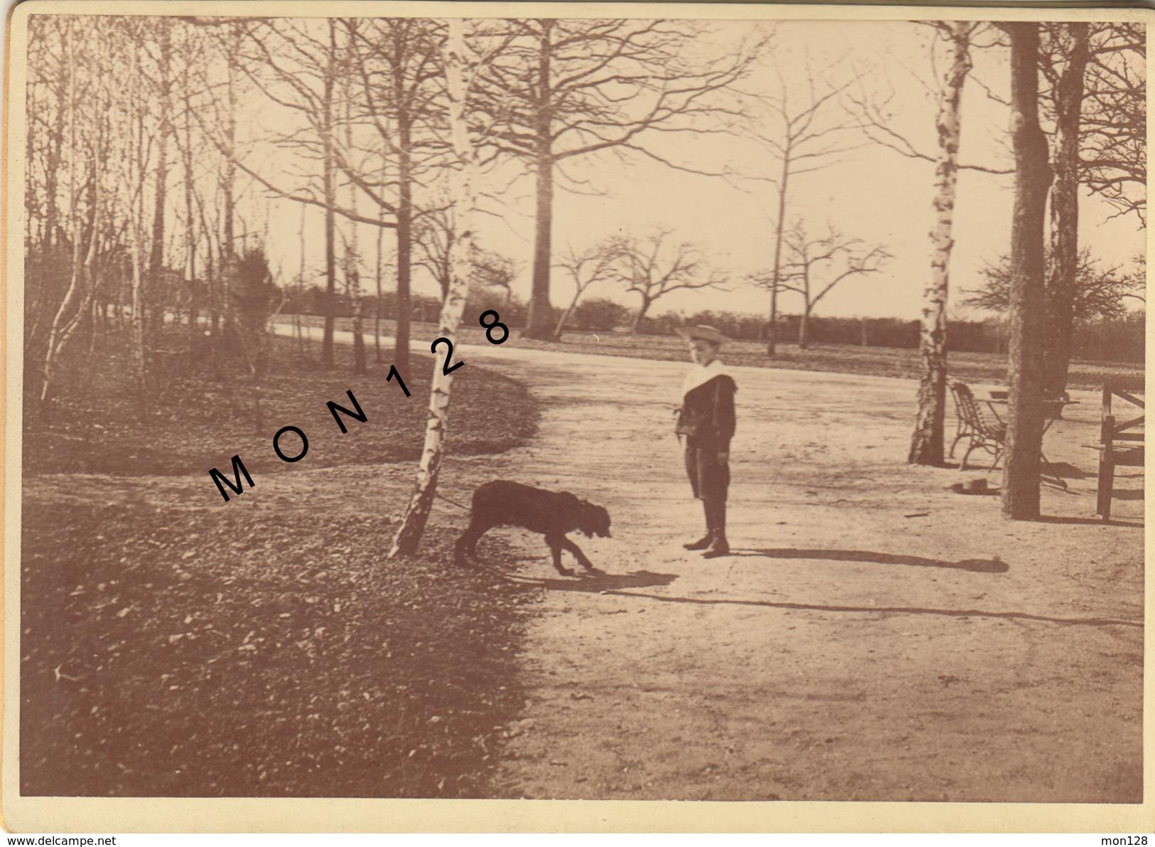 PHOTO 1893 TIRAGE ALBUMINE COLLEE SUR CARTON-DANS UN PARC -GARCON COSTUME MARIN - Photographs