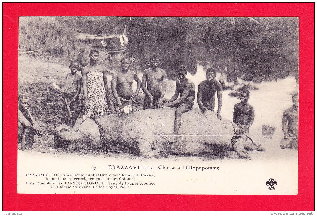 E-Congo-51Ph64  BRAZZAVILLE, Chasse à L'hippopotame, Animation, Cpa Précurseur BE - Brazzaville