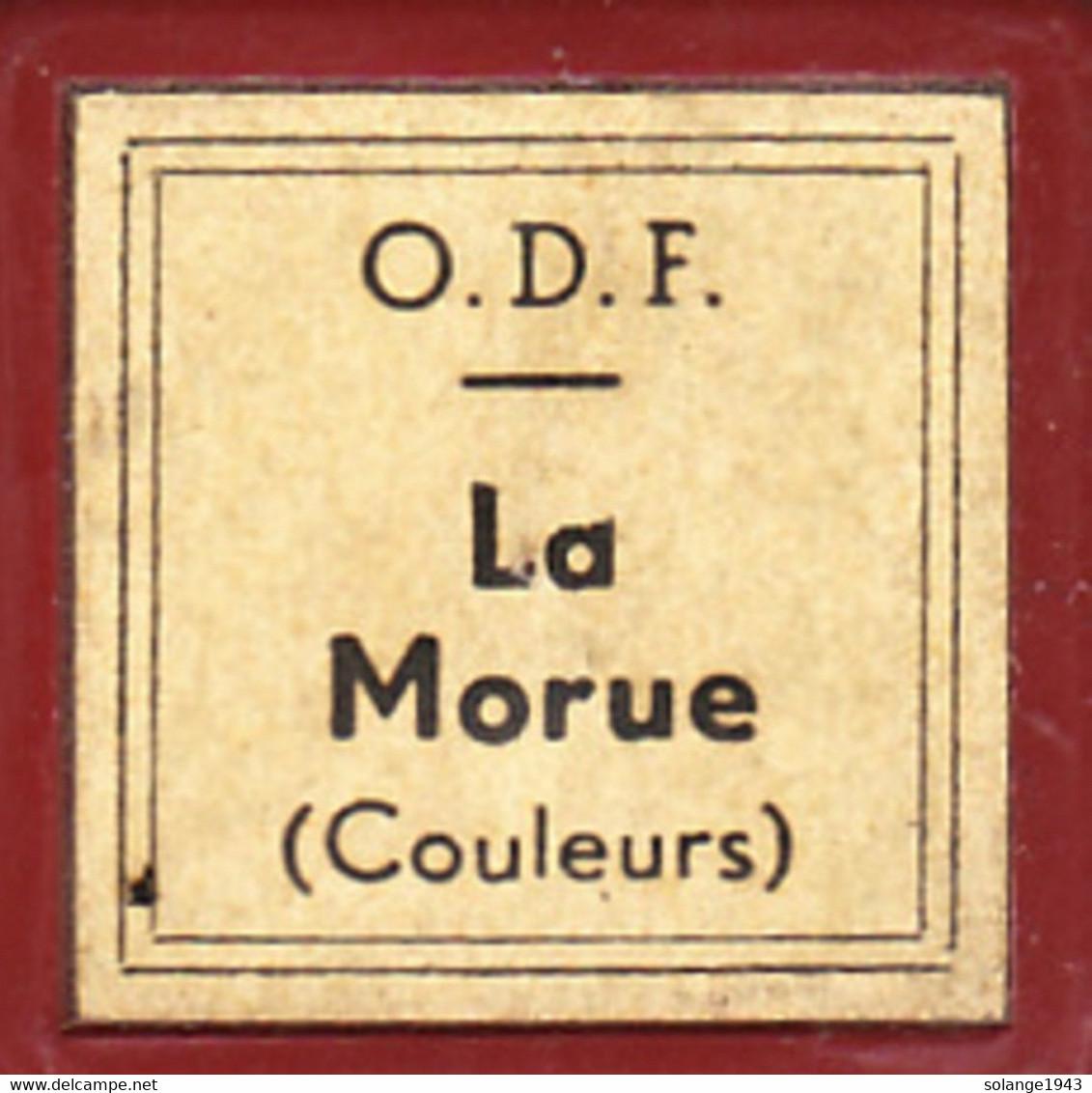 1 Film Fixe LA MORUE Couleur (ETAT TTB ) - Bobines De Films: 35mm - 16mm - 9,5+8+S8mm