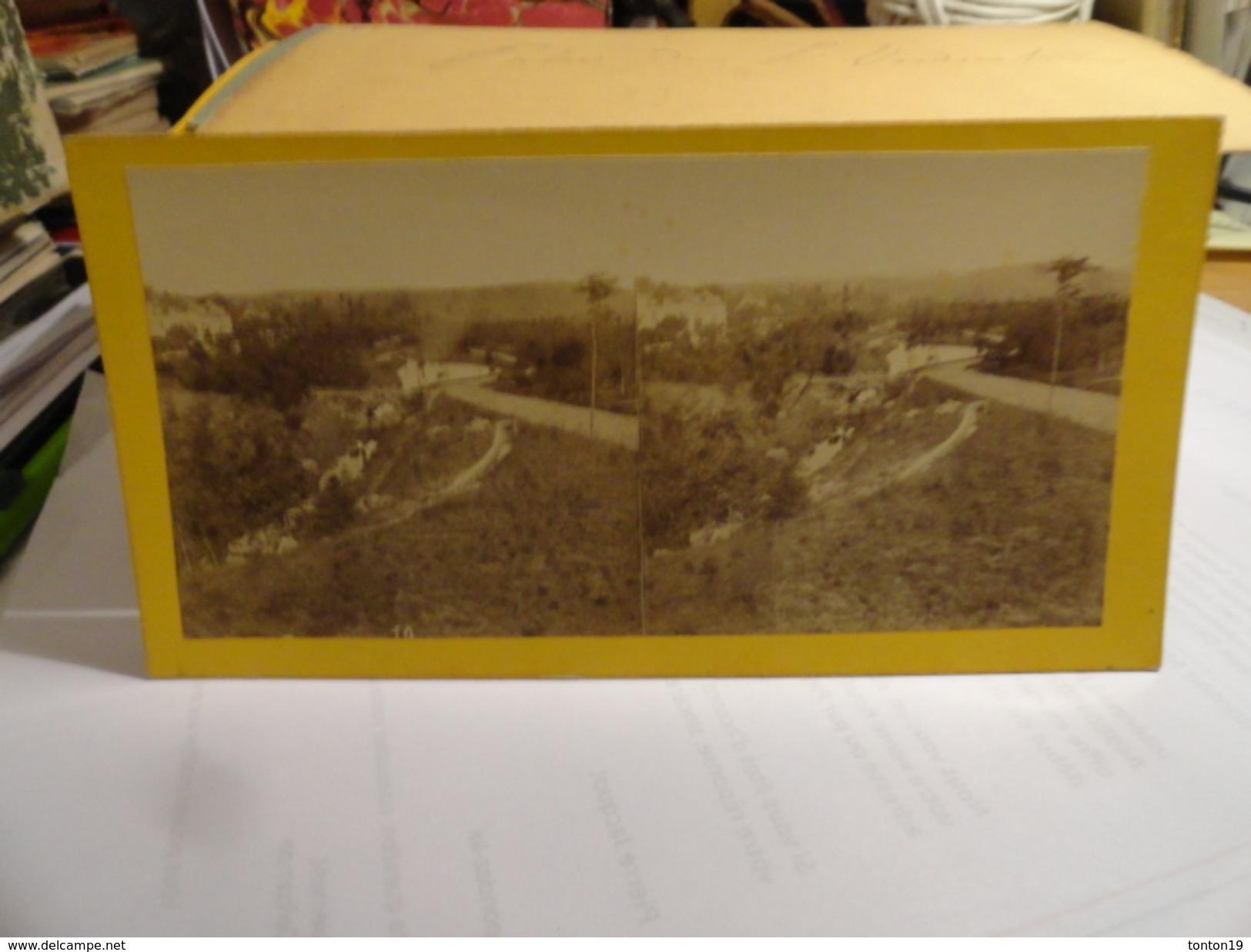 Dept 03 - Vichy -vue Prise  Dans Le Nouveau Parc Sur Les Bords De L'Allier. - Photos Stéréoscopiques