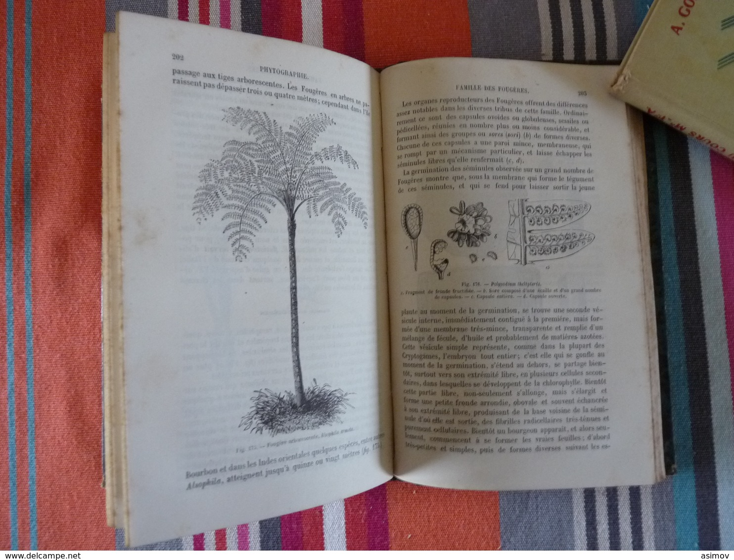 Botanique  Par L'abbé Ed Lambert  (K) - Books, Magazines, Comics