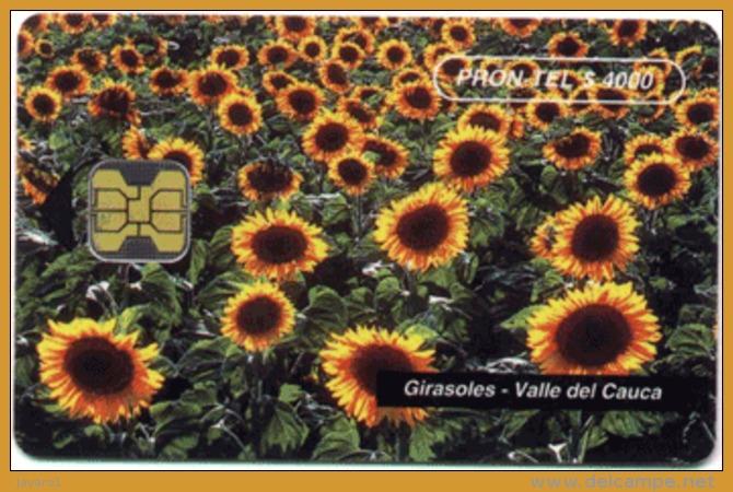 COLOMBIA : COLEM13 PRON TEL$4000 Girasoles Flower MINT In Blister - Colombia