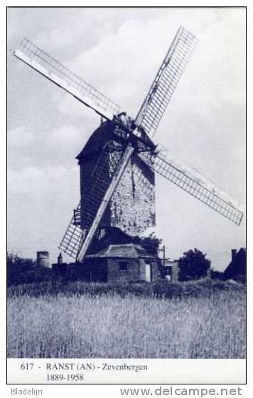 RANST (Antw.) - Molen/moulin - Blauwe Prentkaart Ons Molenheem Van De 'Grote Duffelaar' In Close-up + Stenen Molenromp - Ranst