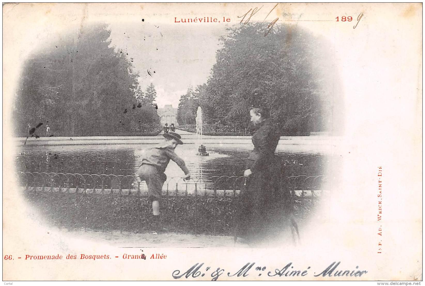 54 - LUNEVILLE - Promenade Des Bosquets - Grande Allée - Luneville
