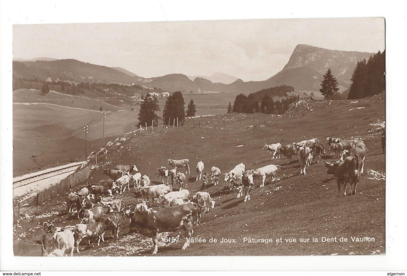 19184 - Vallée De Joux Pâturage Et Vue Sur La Dent De Vaulion Vaches - VD Vaud