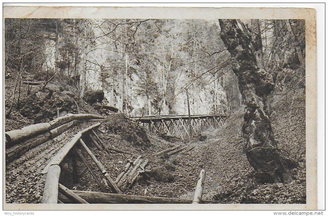 AK 0835  Schneeberg ( Partie In Der Eng - Holzriese ) - Aufnahme Otto Jahn Um 1920-30 - Schneeberggebiet