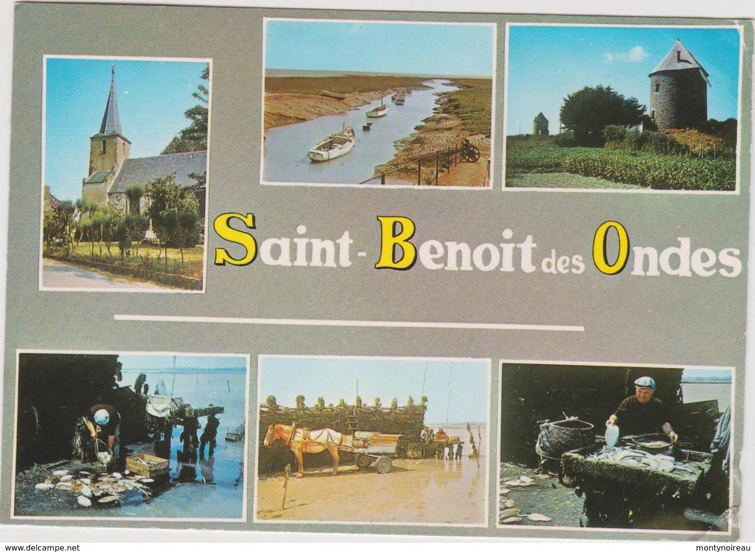 Ille Et  Vilaine :  SAINT  BENOIT  Des  ONDES  : Vues   1986 - France