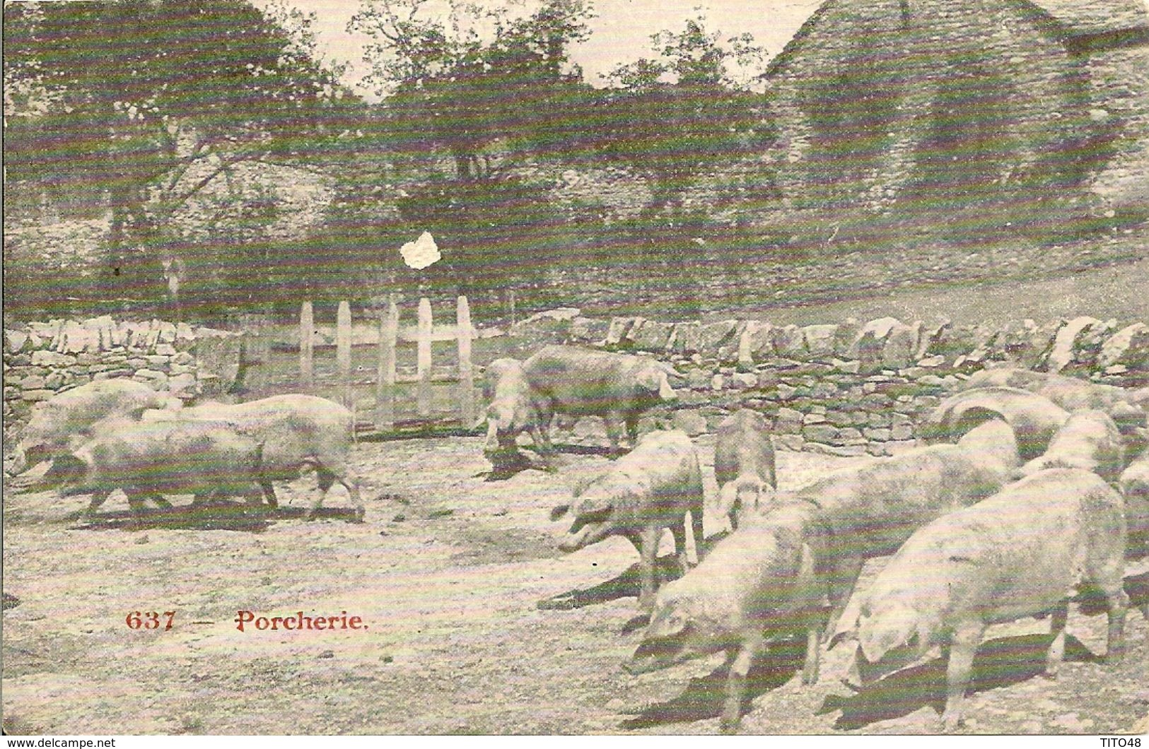 AVEYRON - Porcherie - France