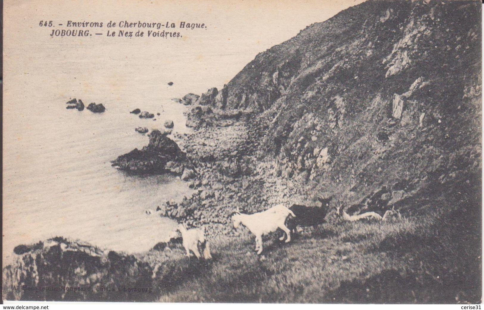 CPA -  645. Env De CHERBOURG  -  JOBOURG - Le Nez De Voidries - Cherbourg