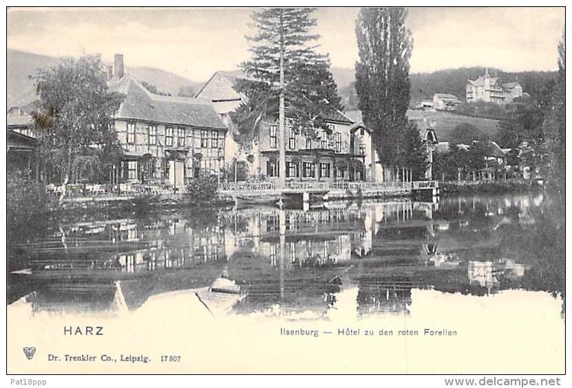 DEUTSCHLAND Allemagne ( Saxe Anhalt ) HARTZ - Illenburg : Hotel Zu Den Roten Forellen - CPA - Germany - Ilsenburg