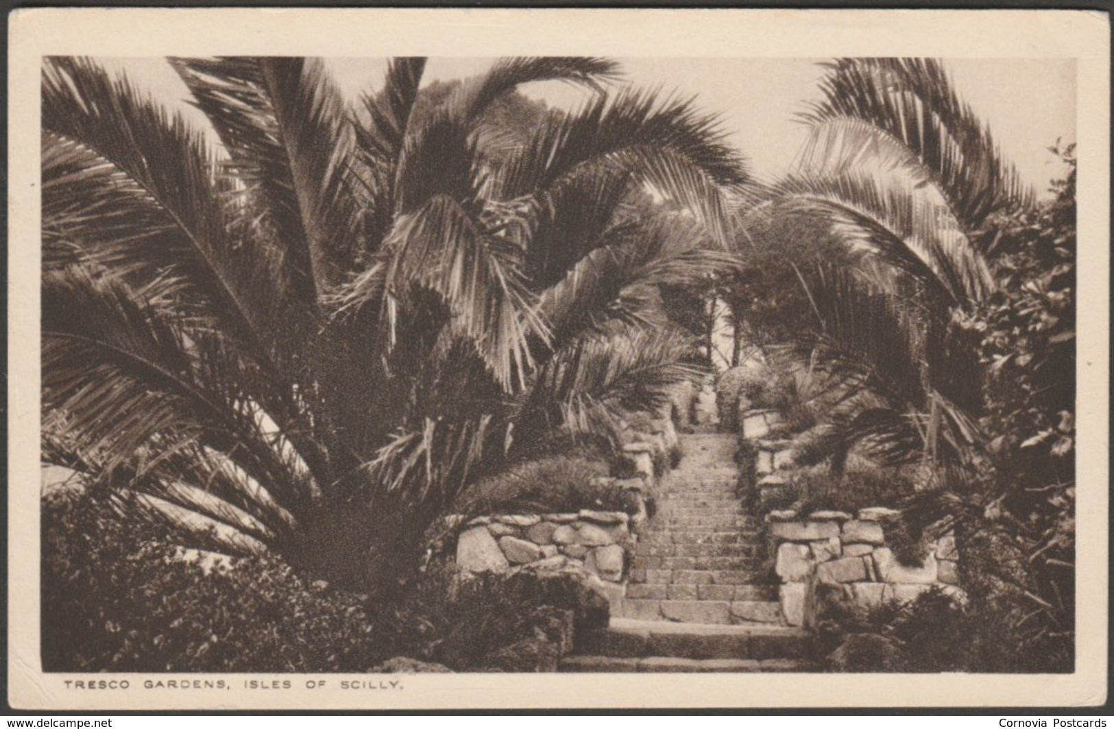 Tresco Gardens, Isles Of Scilly, C.1920s - J I Rogers Postcard - Scilly Isles