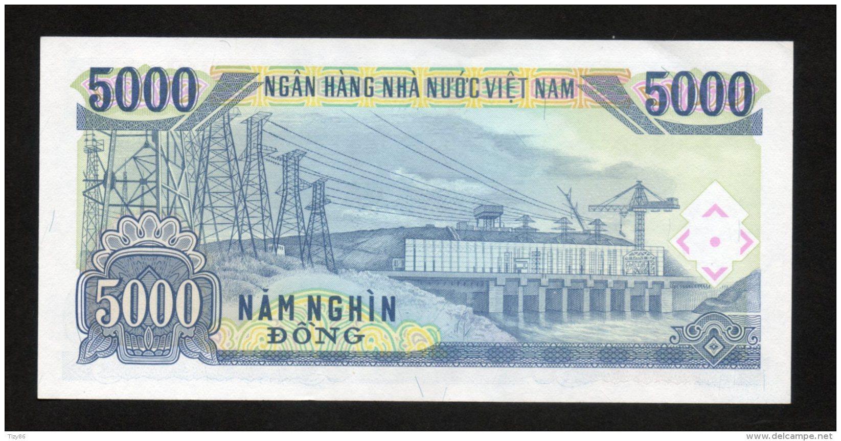 Banconota  Vietnam 5000 Nam Nghi 1991 - Vietnam