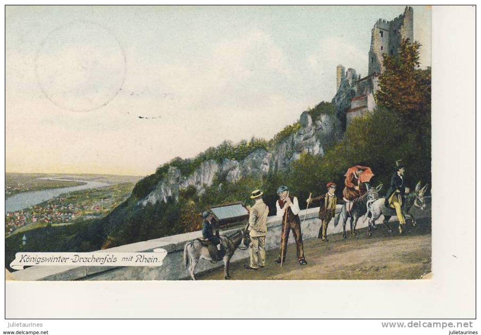 Konigswinter Drachenfels Mit Rhein PROMENADE A DOS D'ANES - Koenigswinter