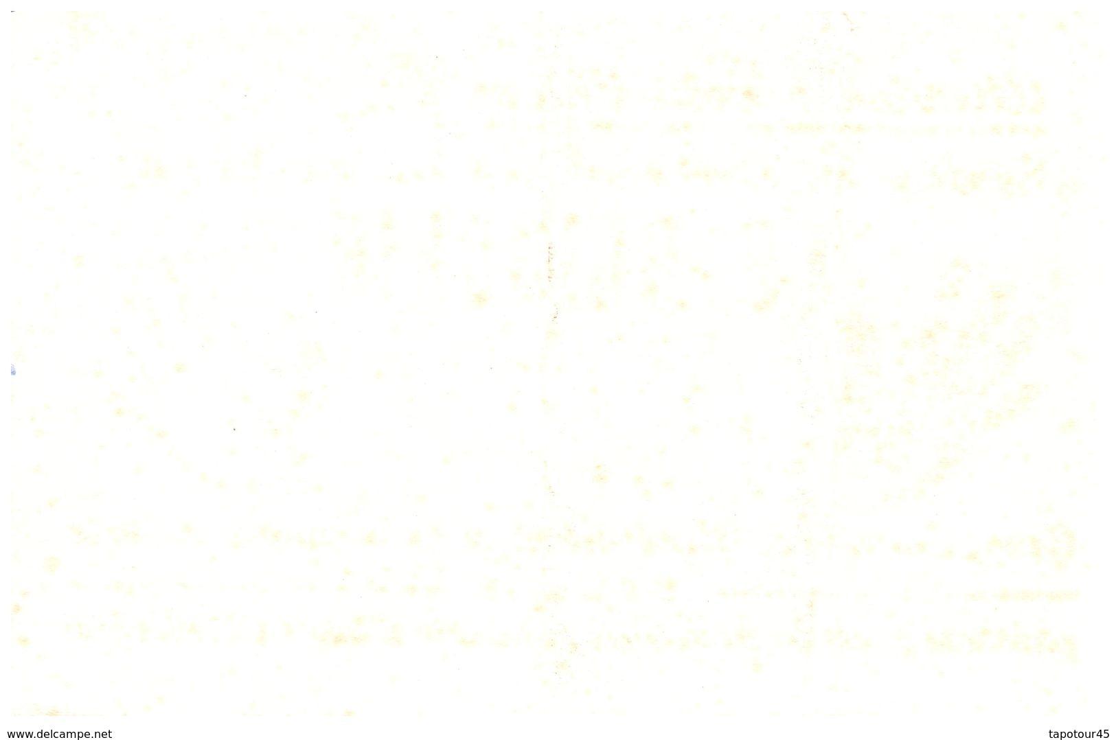 S L B/ Buvard Savon Le Briochin  (N= 2) - Buvards, Protège-cahiers Illustrés