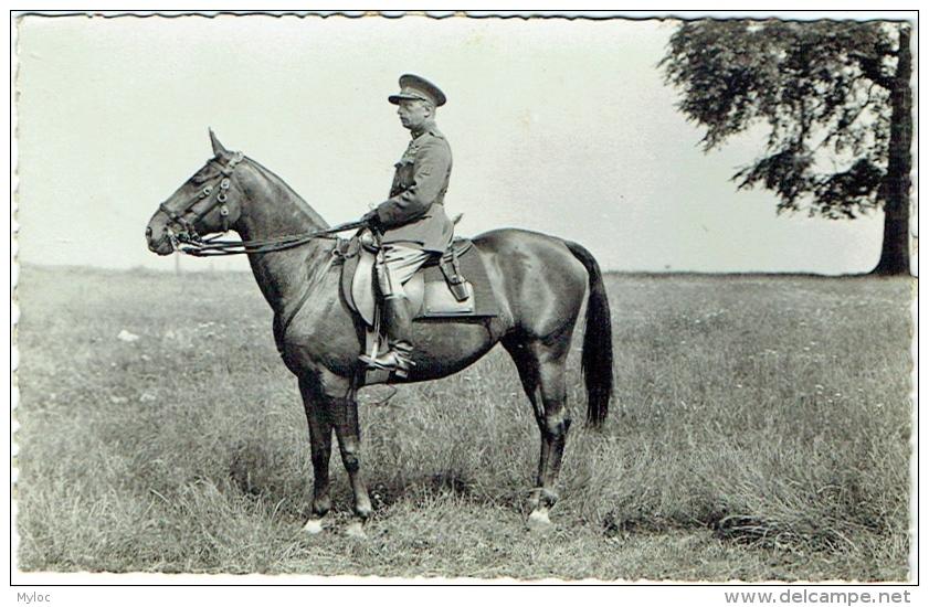 Carte Photo. Militaria. Officier Identifié à Cheval. - Krieg, Militär