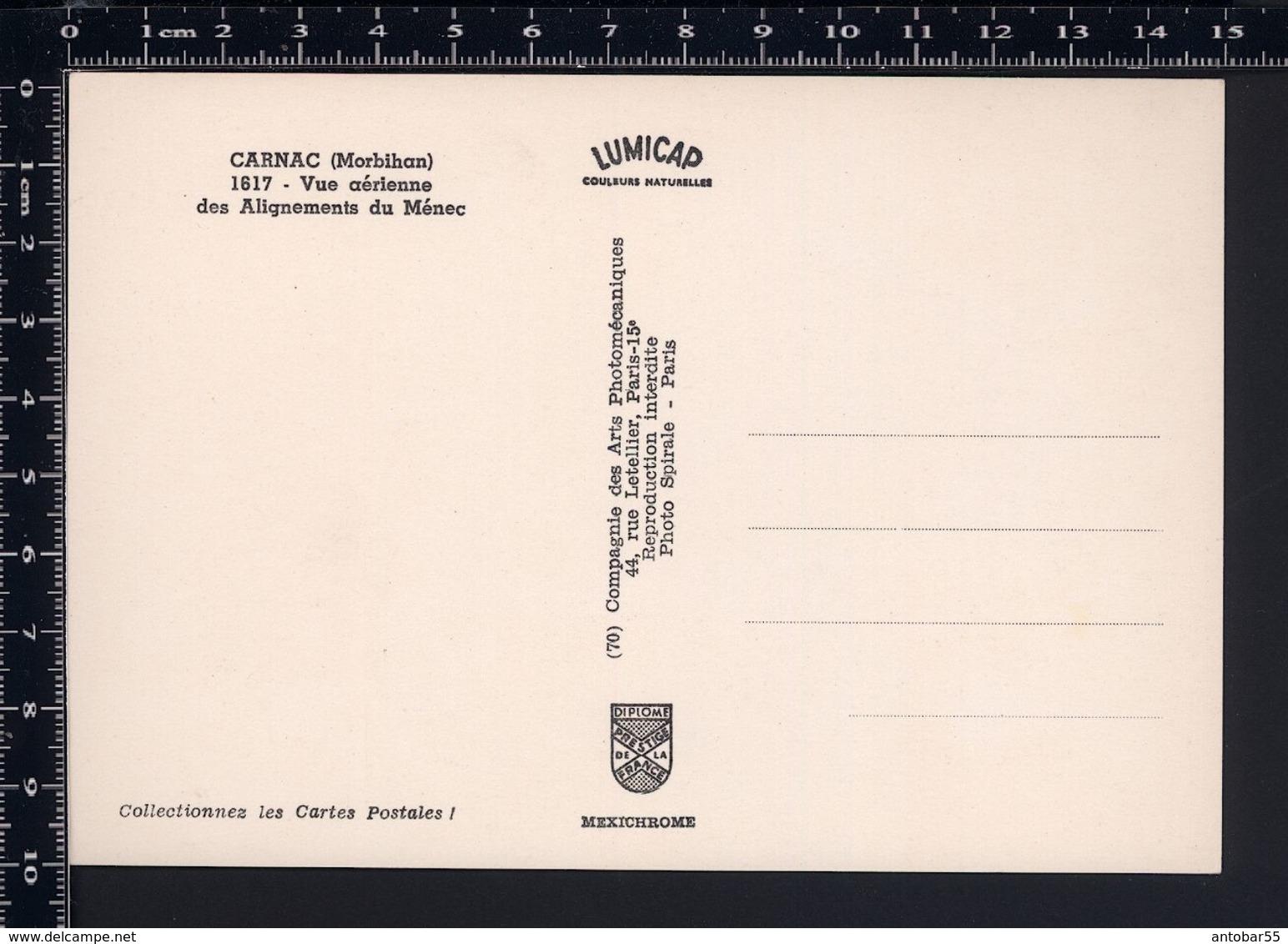 Carnac - Vue Aerienne Des Alignements Du Menec - Non Viaggiata - FR1 - Carnac