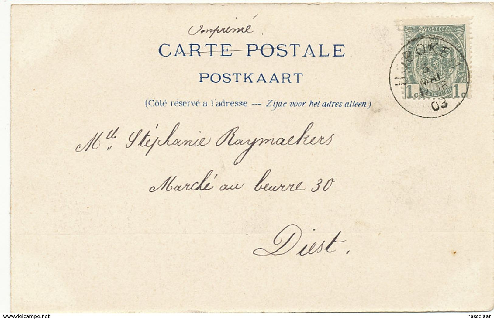 Hoboken - Molenberg - Met Molen - 1903 - Antwerpen