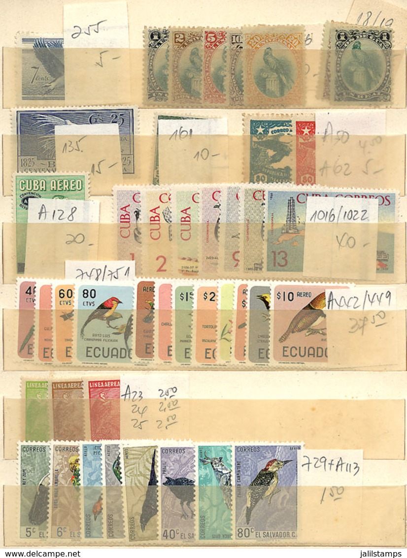 1224 WORLDWIDE: TOPIC BIRDS: Stockbook With Good Number Of Stamps And Sets, Mint (many MN - Stamps