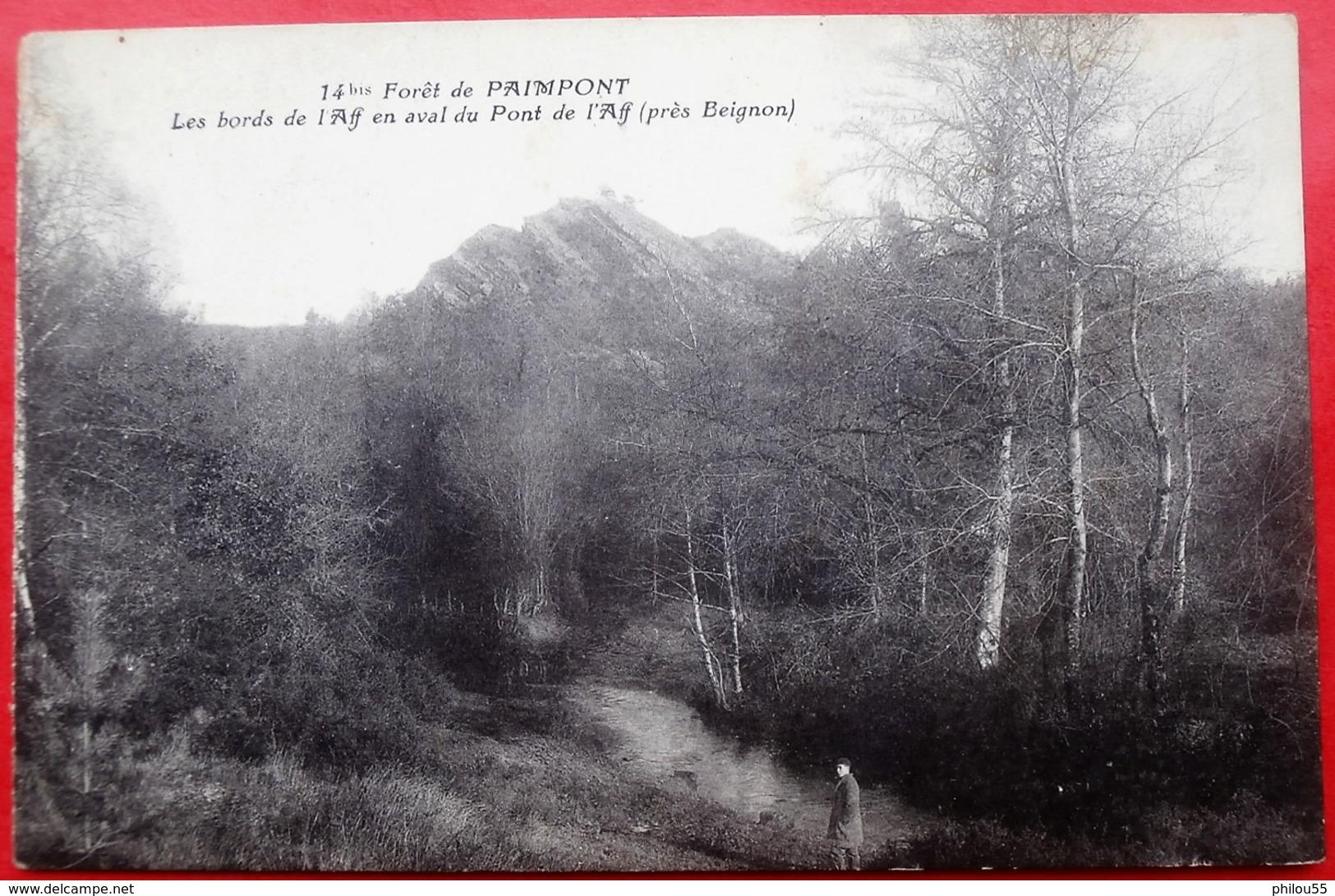 35 Foret De PAIMPONT - Paimpont