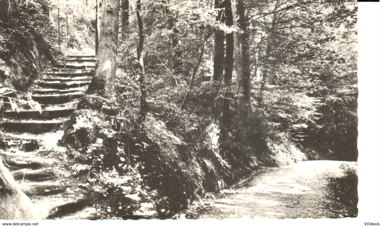 Linkebeek - Escalier Rustique - Landelijk Trap - Linkebeek