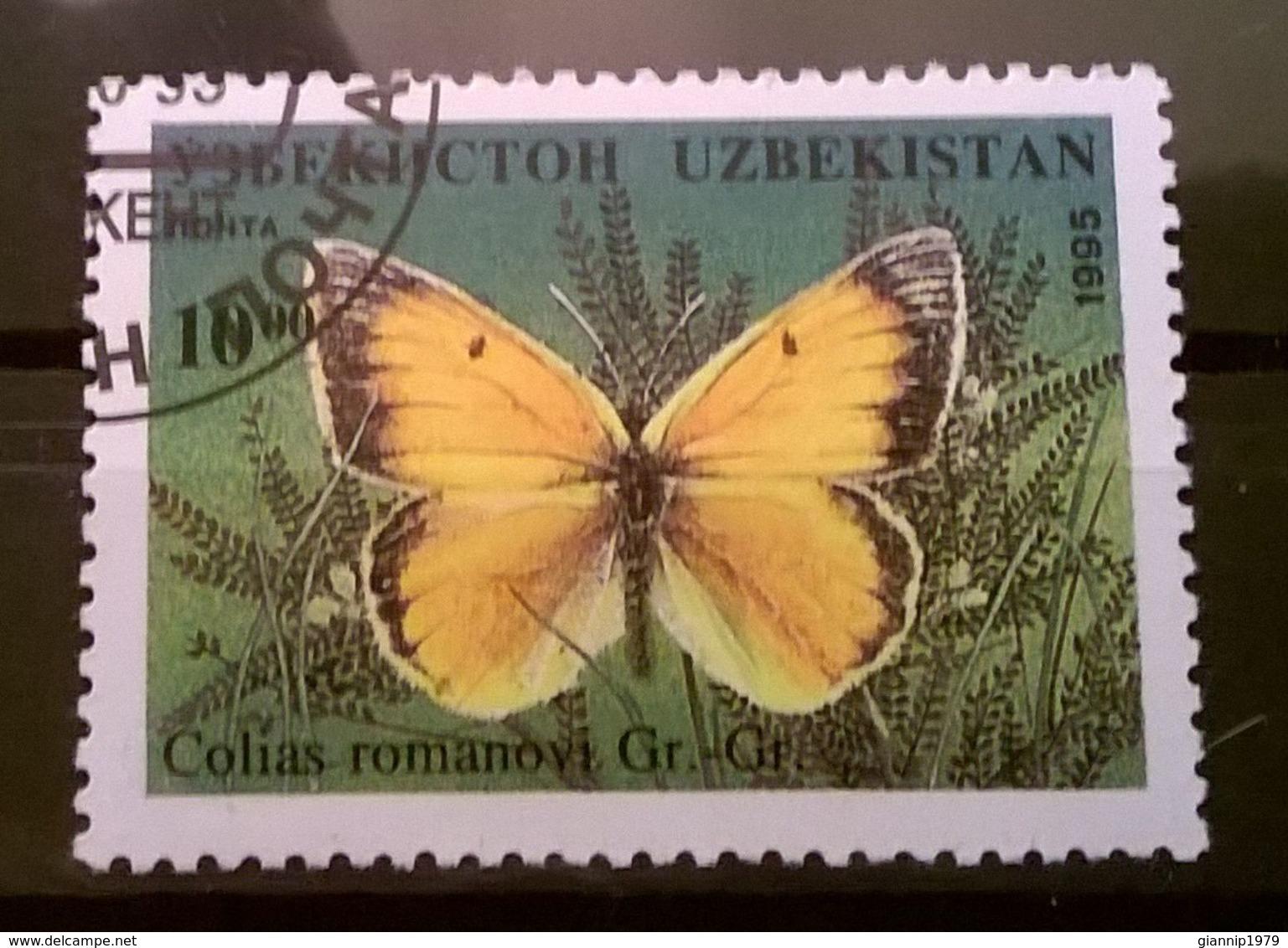 FRANCOBOLLI STAMPS UZBEKISTAN 1995 SERIE FARFALLE NOTTURNE - Uzbekistan