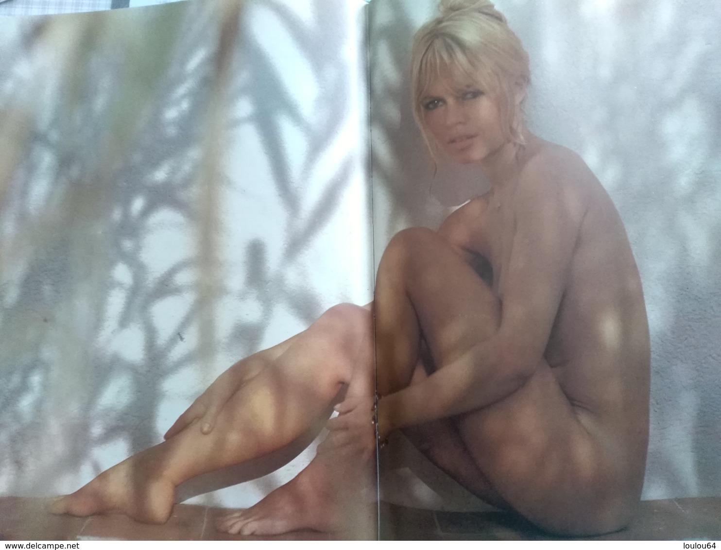 Brigitte Bardot Racontée Par Françoise Sagan - Vue Par Ghislain Dussart - édition Flammarion - - Livres, BD, Revues