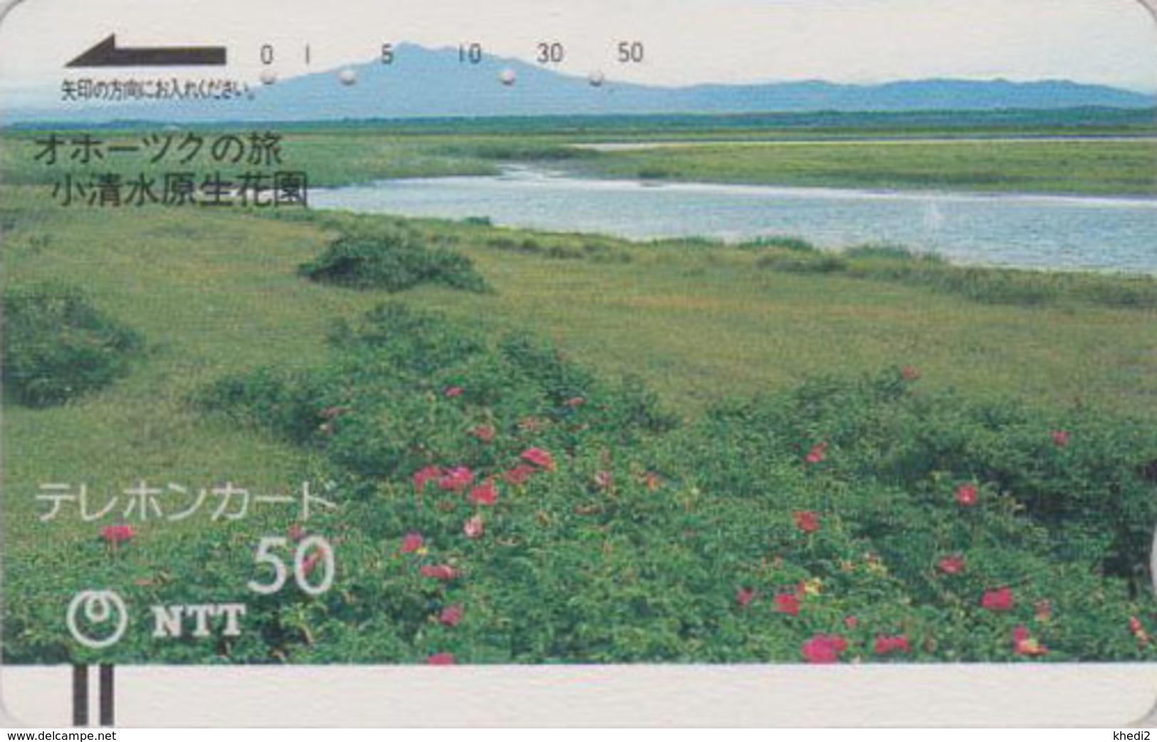 Télécarte Ancienne JAPON / NTT 430-025 - ARCTIQUE / OKHOTSK - ARCTIC  JAPAN Front Bar Phonecard / TBE - Balken TK - Japon