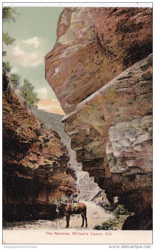 Colorado The Narrows Williams Canyon