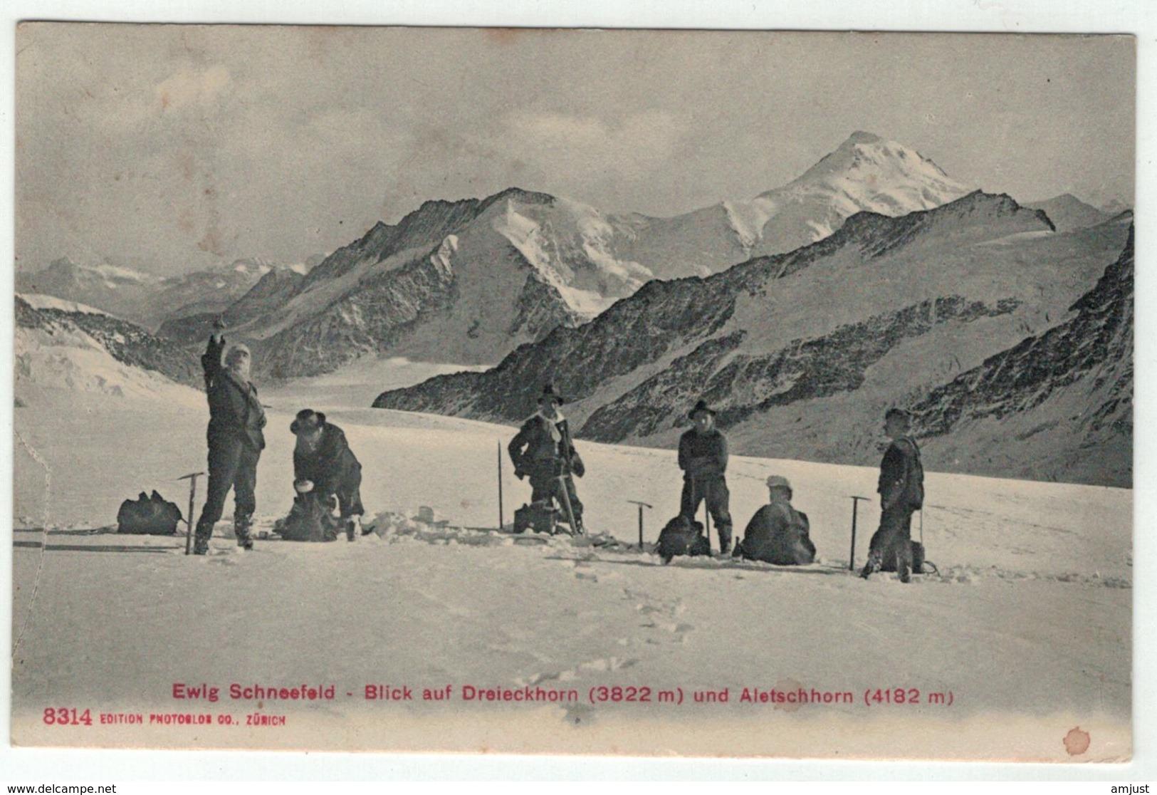Suisse // Schweiz // Switzerland //  Berne  //  Ewig Schneefeld-Blick Auf Dreieckhorn Und Aletschhorn - BE Berne