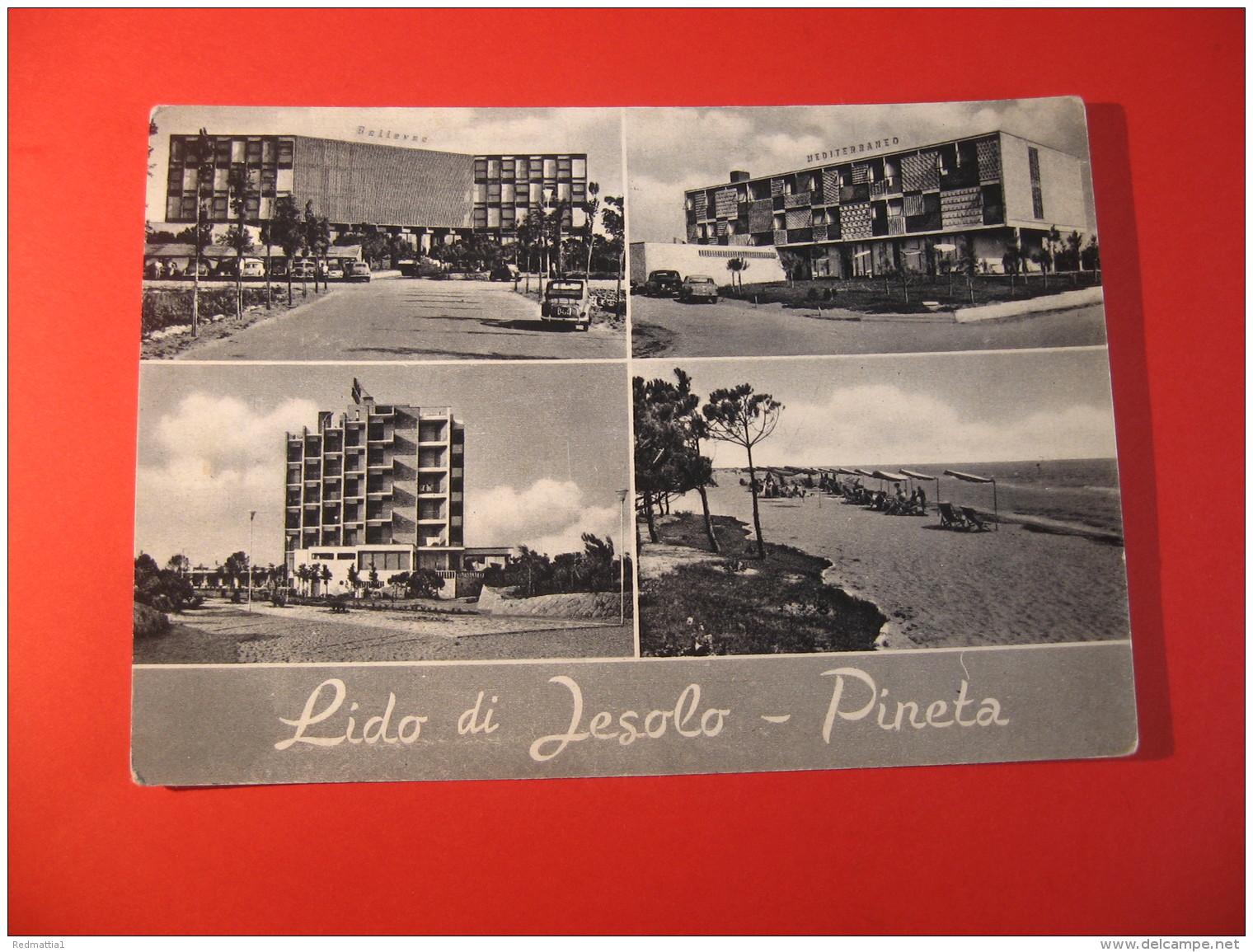 CARTOLINA   LIDO DI IESOLO   PINETA VEDUTINE    ANIMATA    D - 3874 - Venezia