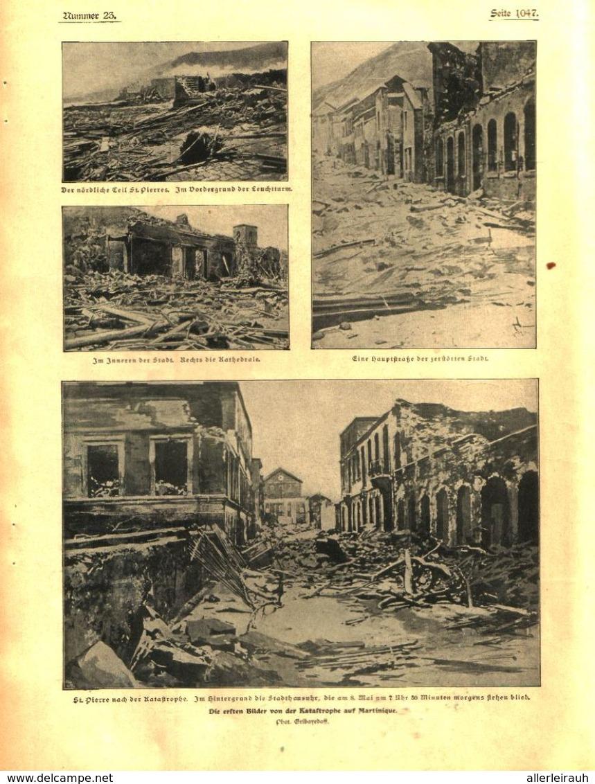 Die Ersten Bilder Von Der Katastrophe Auf Martinique  / Druck, Entnommen Aus Zeitschrift /1902 - Bücher, Zeitschriften, Comics
