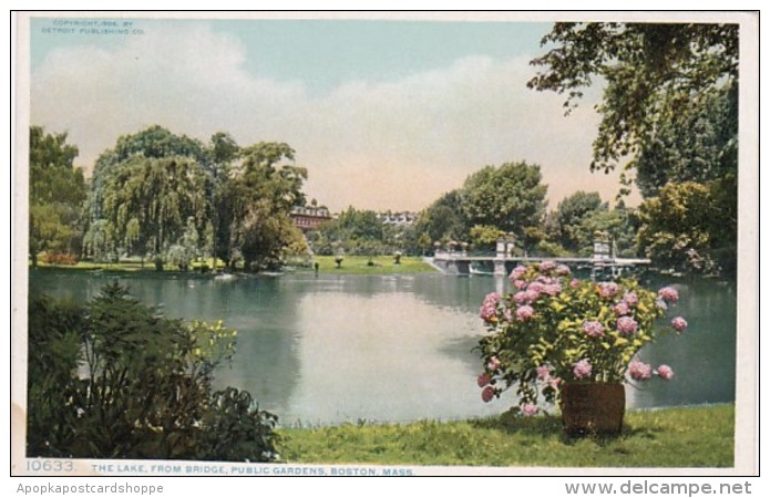 Massachusetts Boston The Lake From Bridge Public Garden Detroit