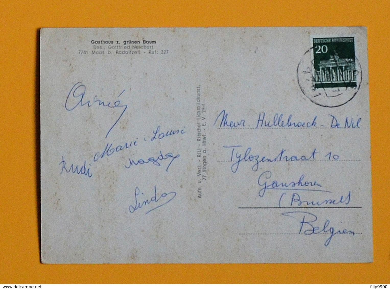 7761 Moos Bei Radolfzell - Gasthaus Z. Grünen Baum - 1968 - VW Käfer,NSU Sport Prinz,Mercedes Heckflosse,Opel - Radolfzell