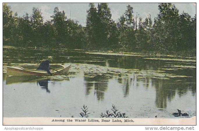 Michigan Bear Lake Among The Water Lilies