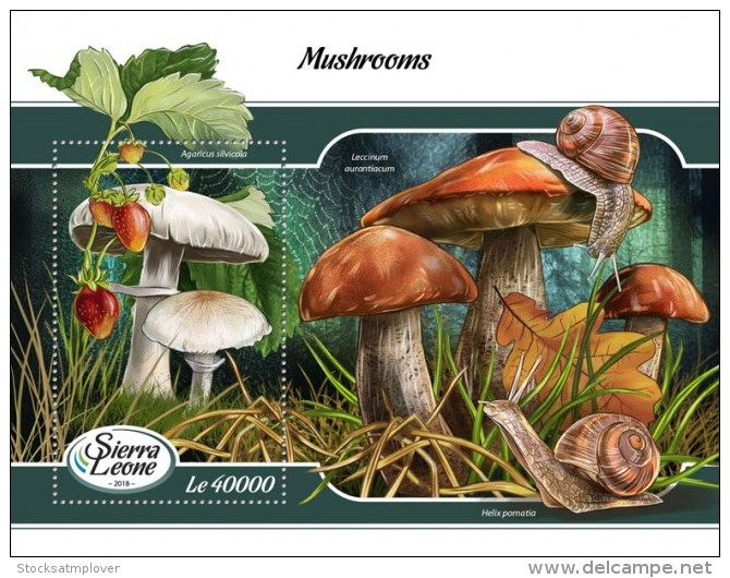 Sierra Leone  2018 Mushrooms S201802 - Sierra Leone (1961-...)