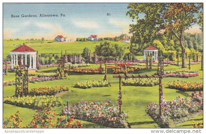 Pennsylvania Allentown View Of The Rose Gardens