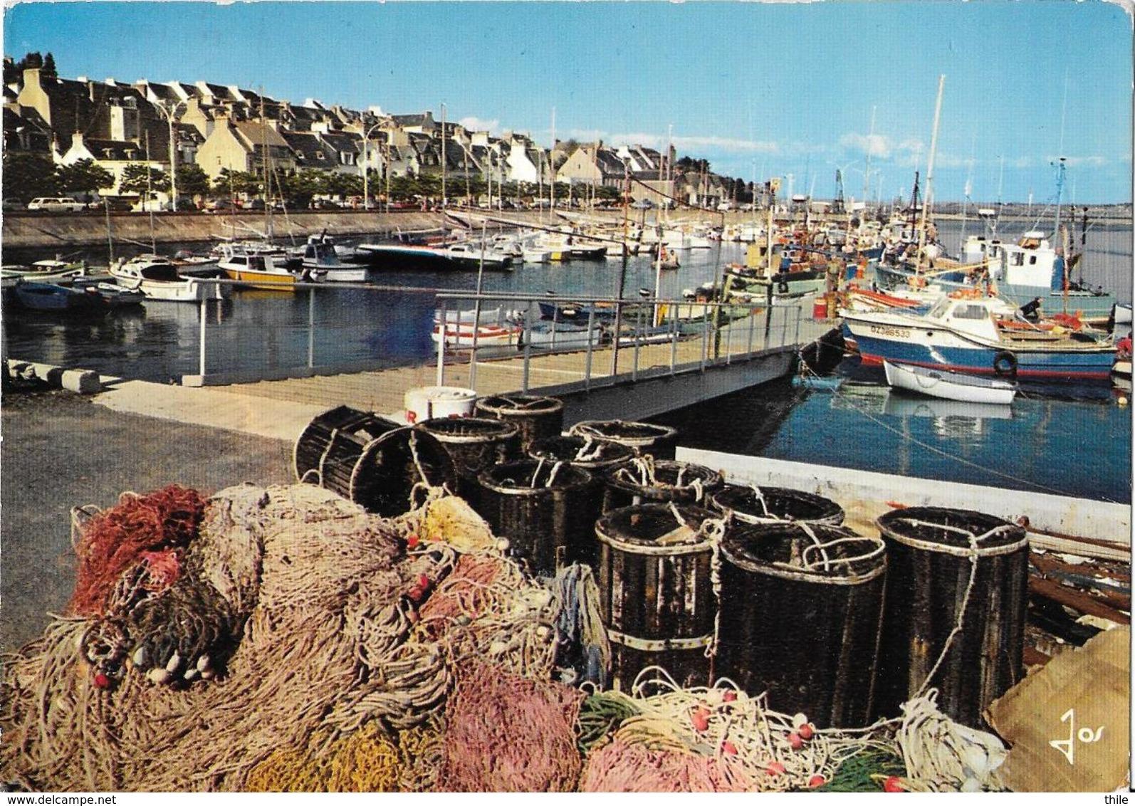DOUARNENEZ - TREBOUL - Le Port De Plaisance - Douarnenez