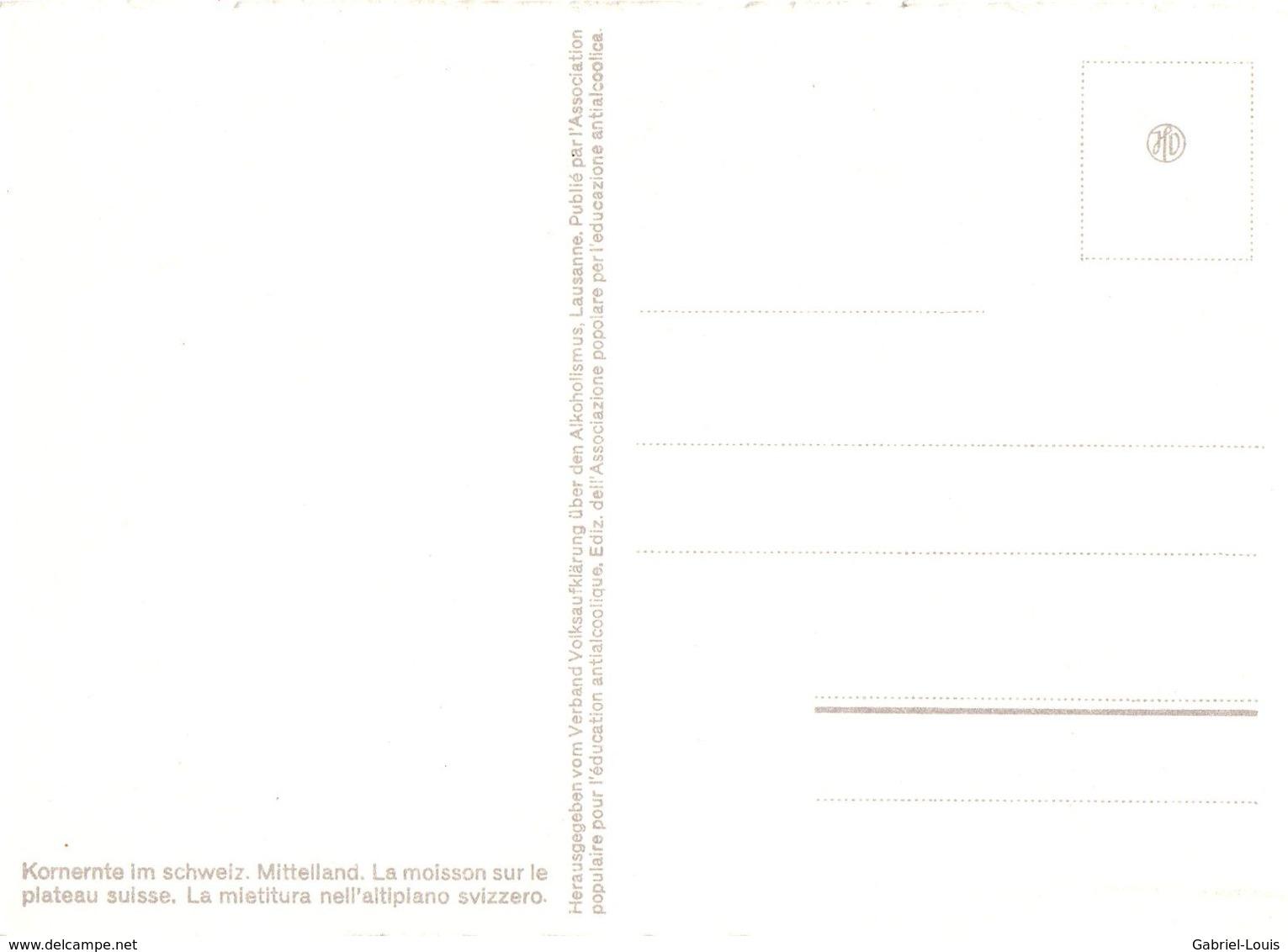 Kornernte Im Schweiz. Mittelland - La Moisson Sur Le Plateau Suisse - (carte10 X 15 Cm) - Cultures
