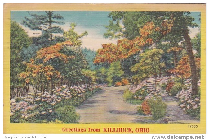 Ohio Greetings From Killbuck 1957