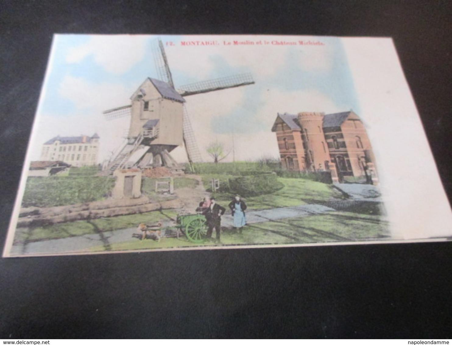 Montaigu Scherpenheuvel, Le Moulin Et Le Chateau Michiels - Scherpenheuvel-Zichem