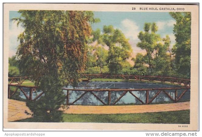 Ohio Castalia The Blue Hole Curteich