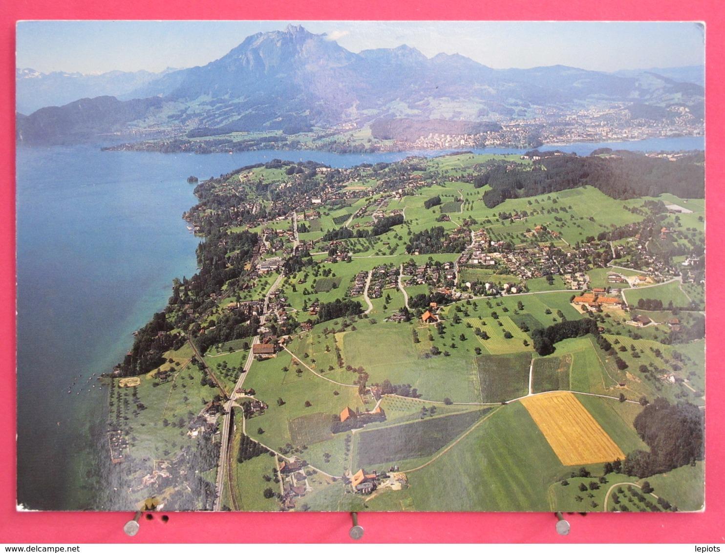 Suisse - Meggen Am Vierwaldstättersee Mit Pilatus Und Luzerner Bucht - Scans Recto-verso - LU Lucerne