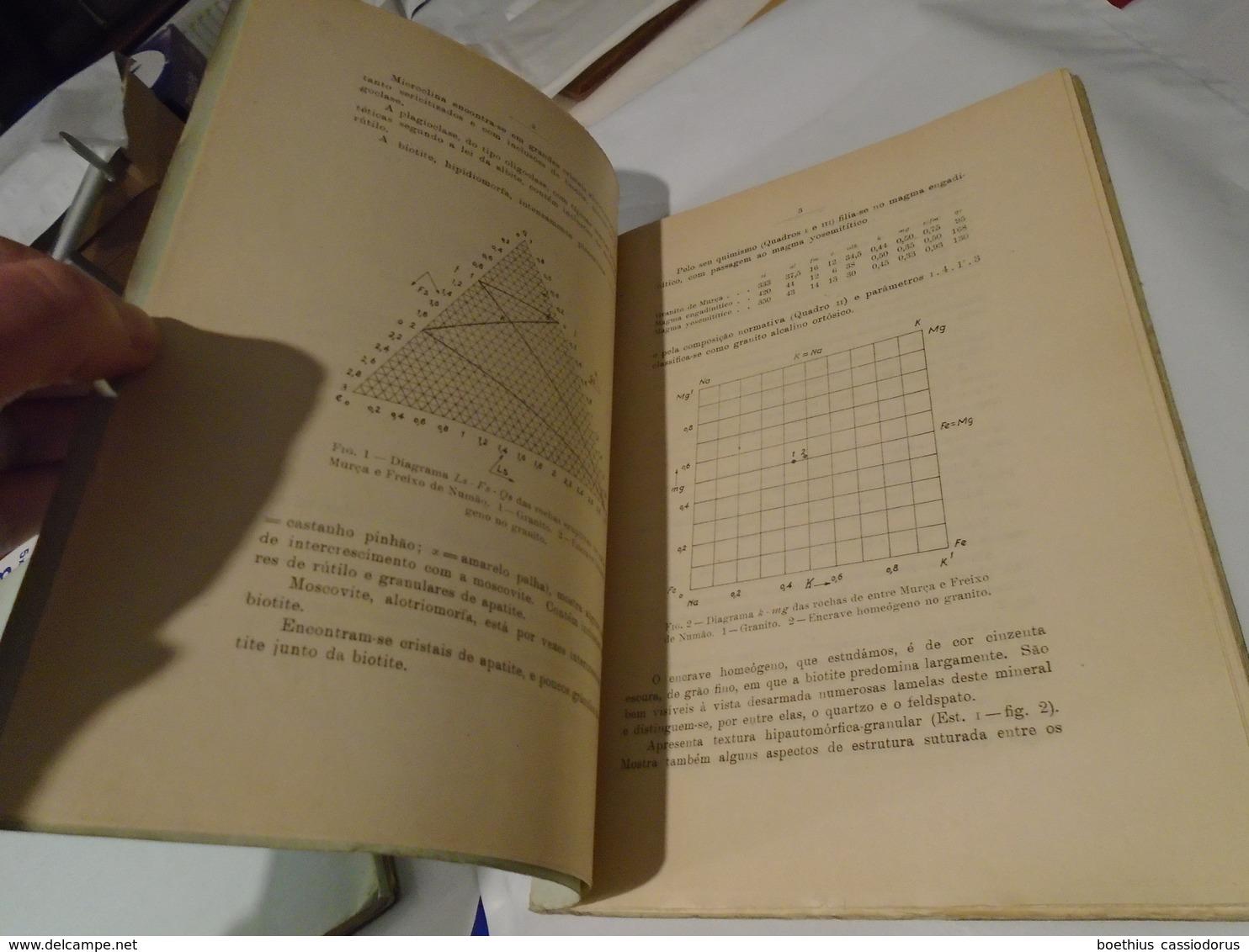 Museu E Laboratorio Mineralogico Geologico E Centro De Estudos Geologicos Universidade COÏMBRA. MEMORIAS NOTICIAS N° 32 - Livres, BD, Revues