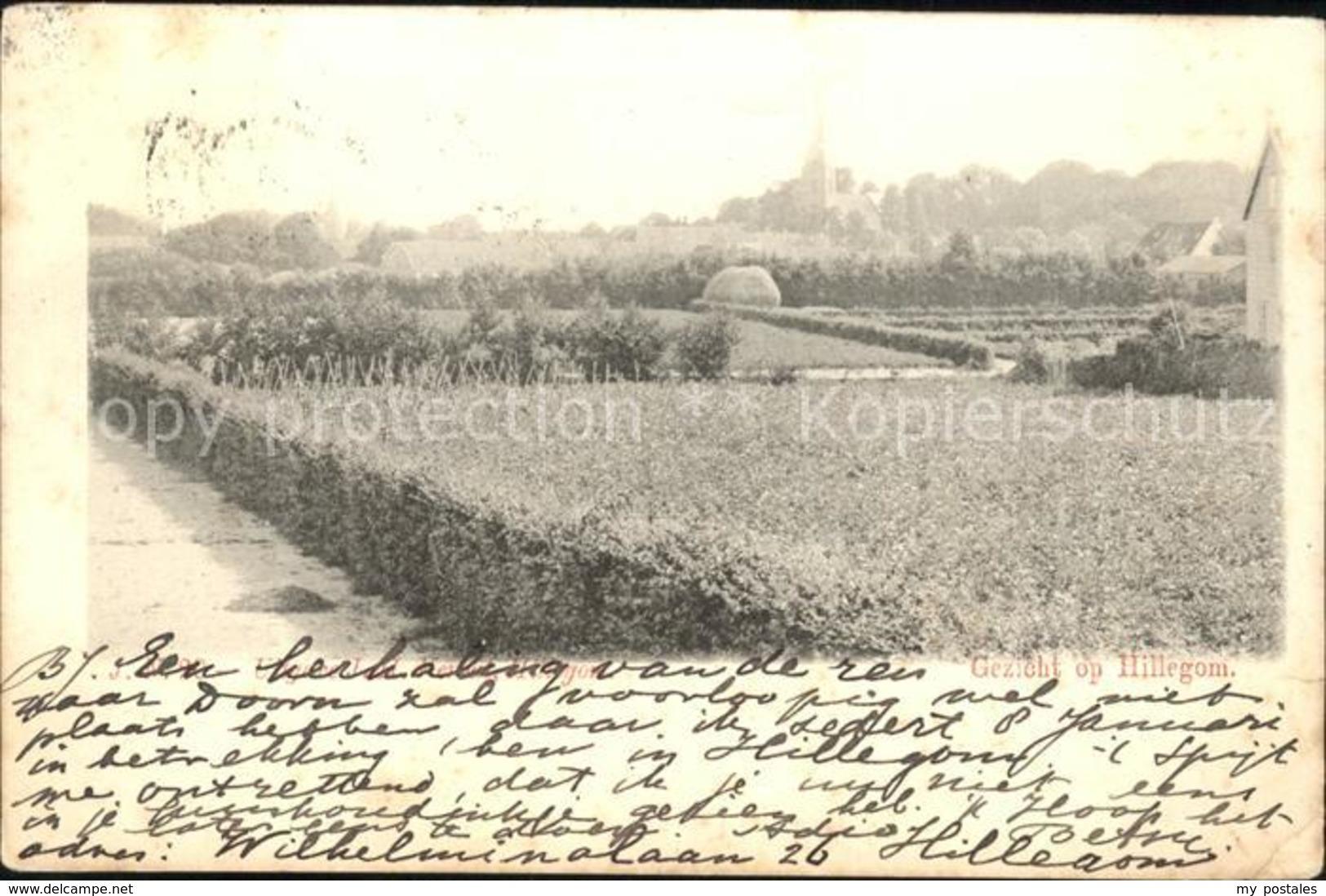 11892044 Hillegom  Hillegom - Pays-Bas